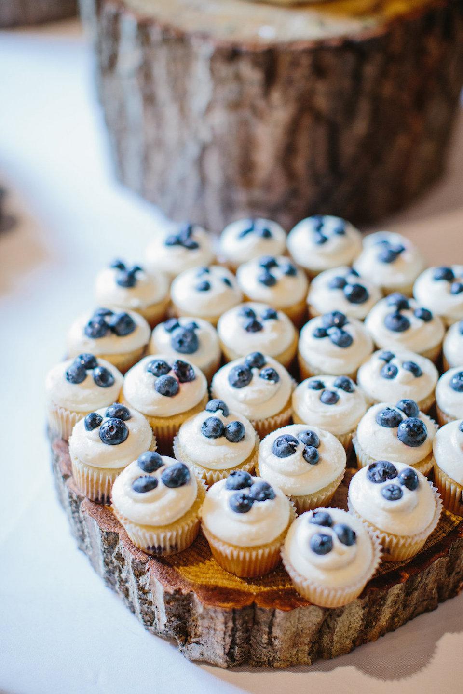 Meghan Bruns mini cupcakes (pro pic)